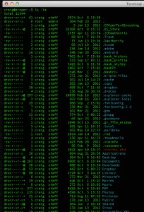 Terminal_—_bash-ls-3