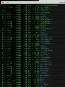 Terminal_—_bash-ls-4